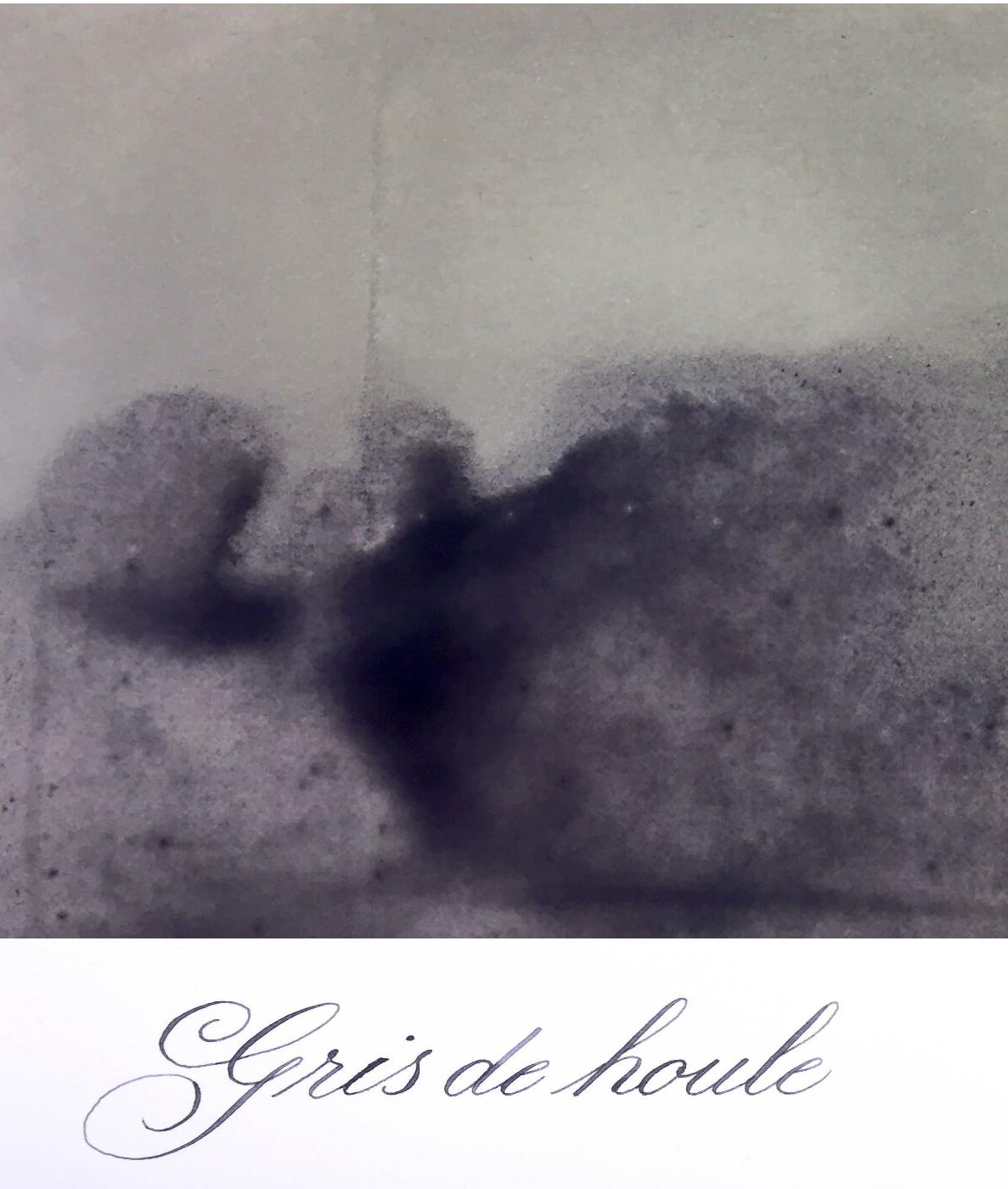 Jacques Herbin  - Gris de Houle  Ink Sample 2ml